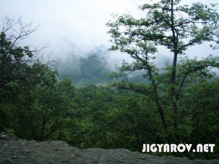 Карабах:флора и фауна